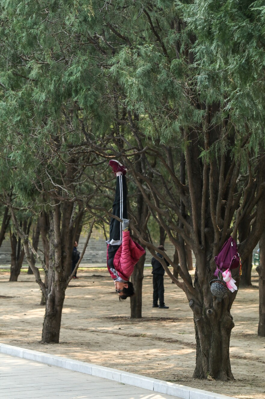 Xie Yuyin, a 55-year-old regular at Beijing's Ditan Park, likes to exercise by hanging upside down from tree branches.