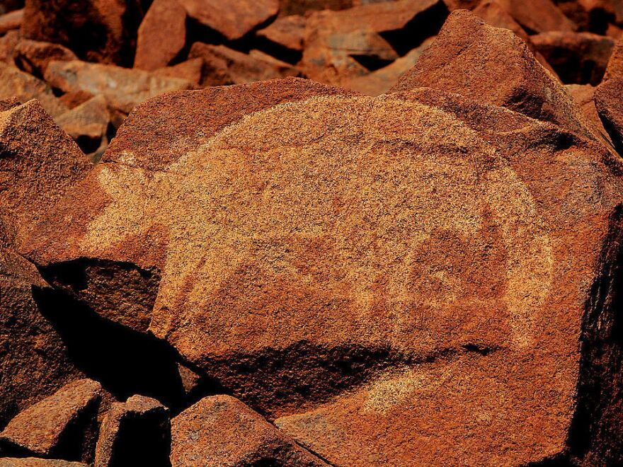This June 2008 photo shows an ancient Aboriginal rock carving in the Burrup Peninsula in the north of Western Australia.