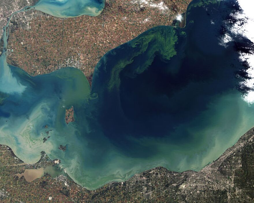 Satellite view of toxic algal bloom on Lake Erie