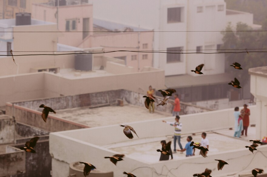 A rooftop perch is perfect for kite-flying.