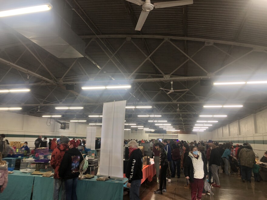 The youth building at the Clark County fairgrounds for the Exotic Pet Exposition