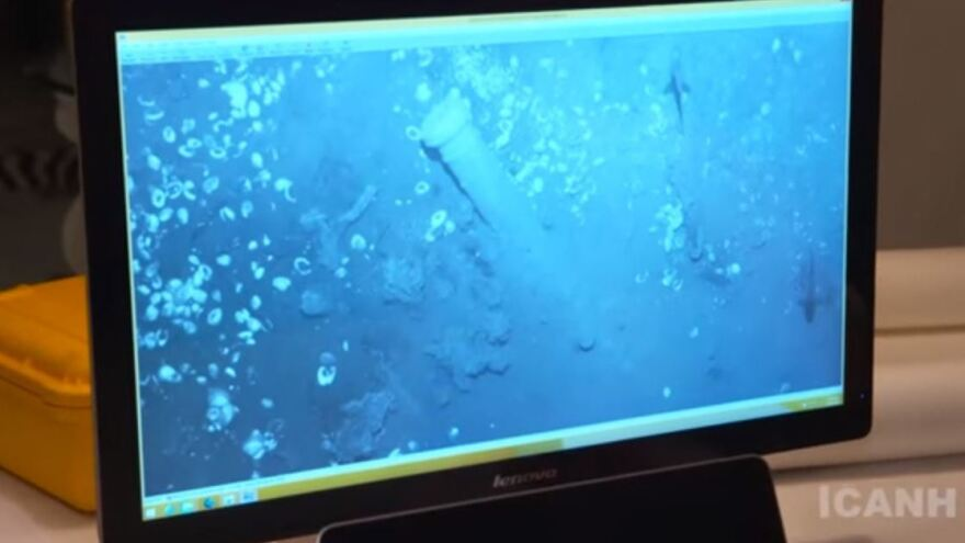 A still from a video released by Colombia's  Institute of Anthropology and History shows bronze cannons that researchers match those of a legendary Spanish galleon.
