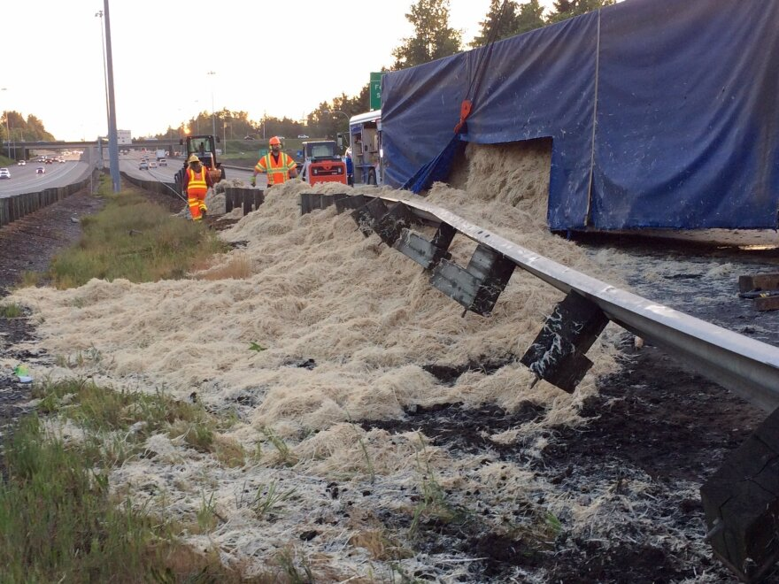 Yes, those are all chicken feathers — 40,000 pounds of feathers. A semi-truck lost them when it rolled over Wednesday on Interstate 5 in Washington state.