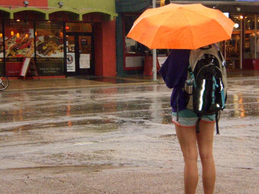 rain, umbrellas 001.jpg