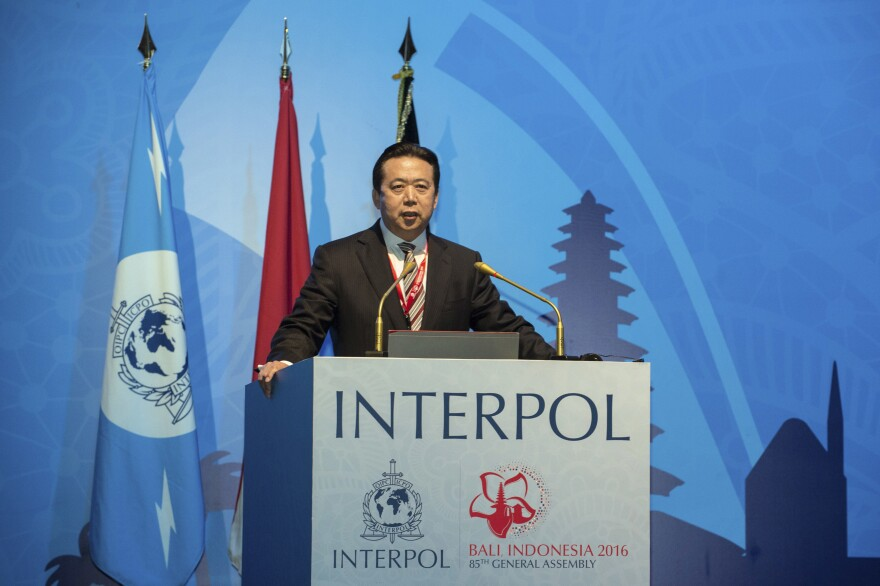 Chinese Vice Minister of Public Security Meng Hongwei delivers a campaign speech at the 85th session of the general assembly of the International Criminal Police Organization (Interpol) on Thursday in Bali, Indonesia.