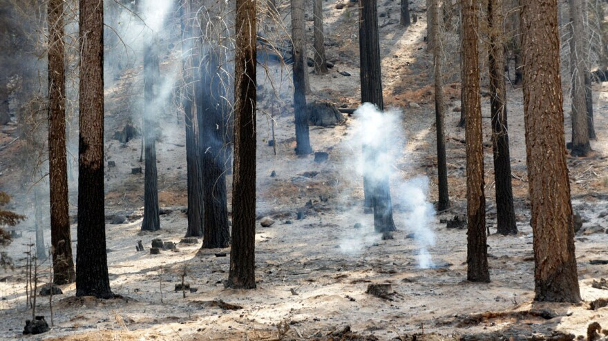 A hot spot smolders in the burn area of the Rim Fire in Yosemite National Park.