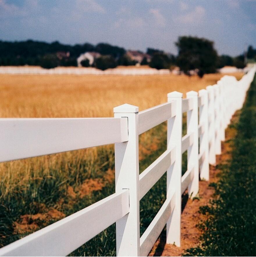 Picket fence along field