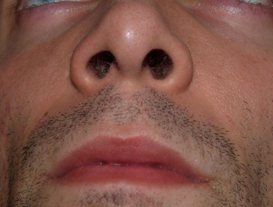 nose_up_the_nostrils.jpg
