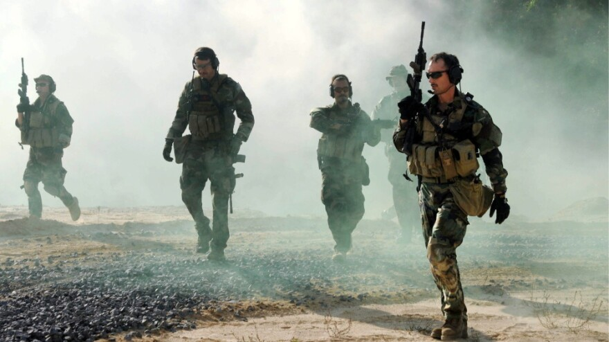 President Obama has called on small, elite military units to carry out several risky operations in the past year, like the hostage rescue this week in Somalia. Here, Navy SEALs are shown during a training exercise at the John C. Stennis Space Center in Mississippi.