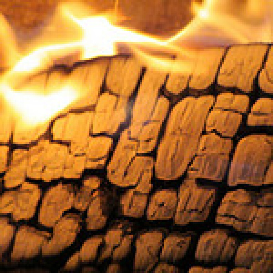 wood_fire.ccuser_linus_art.jpg