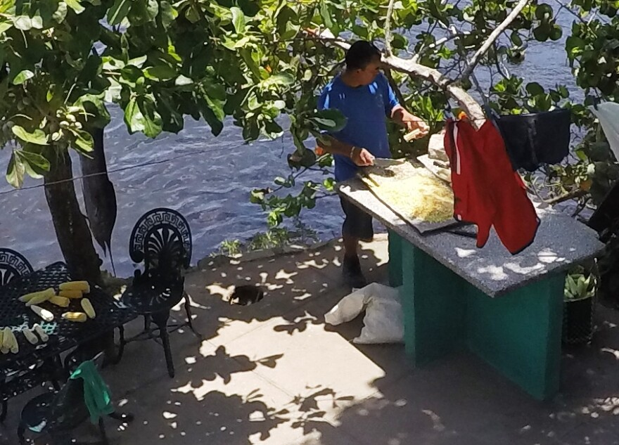 Freshly-cleaned catch at Playa Larga
