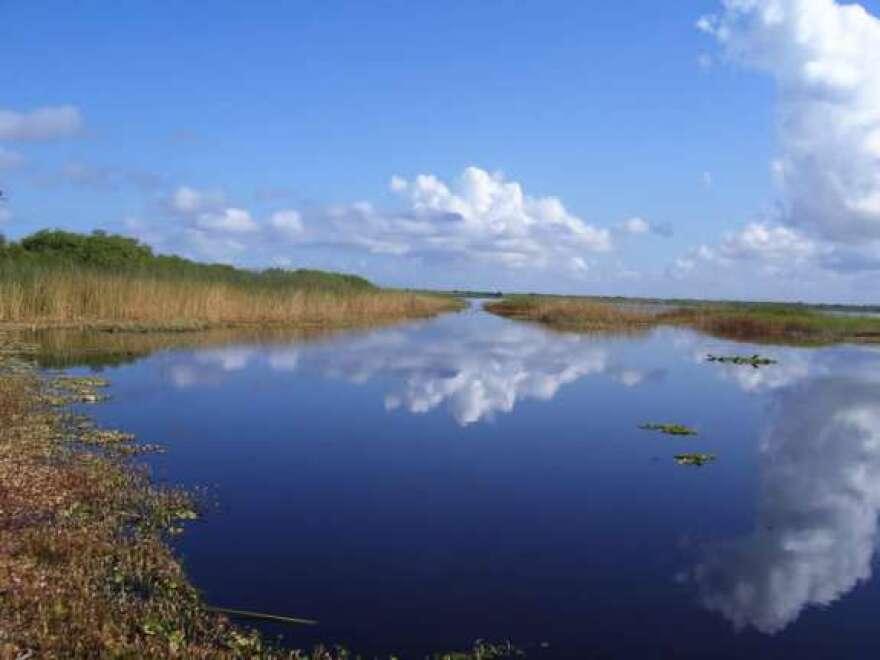 indian-river-lagoon.jpg