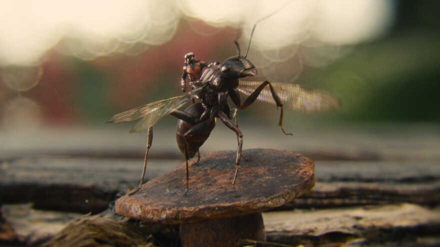 Visual effects supervisor Jake Morrison wanted <em>Ant-Man</em>'s titular insects to be both accurate and relatable.