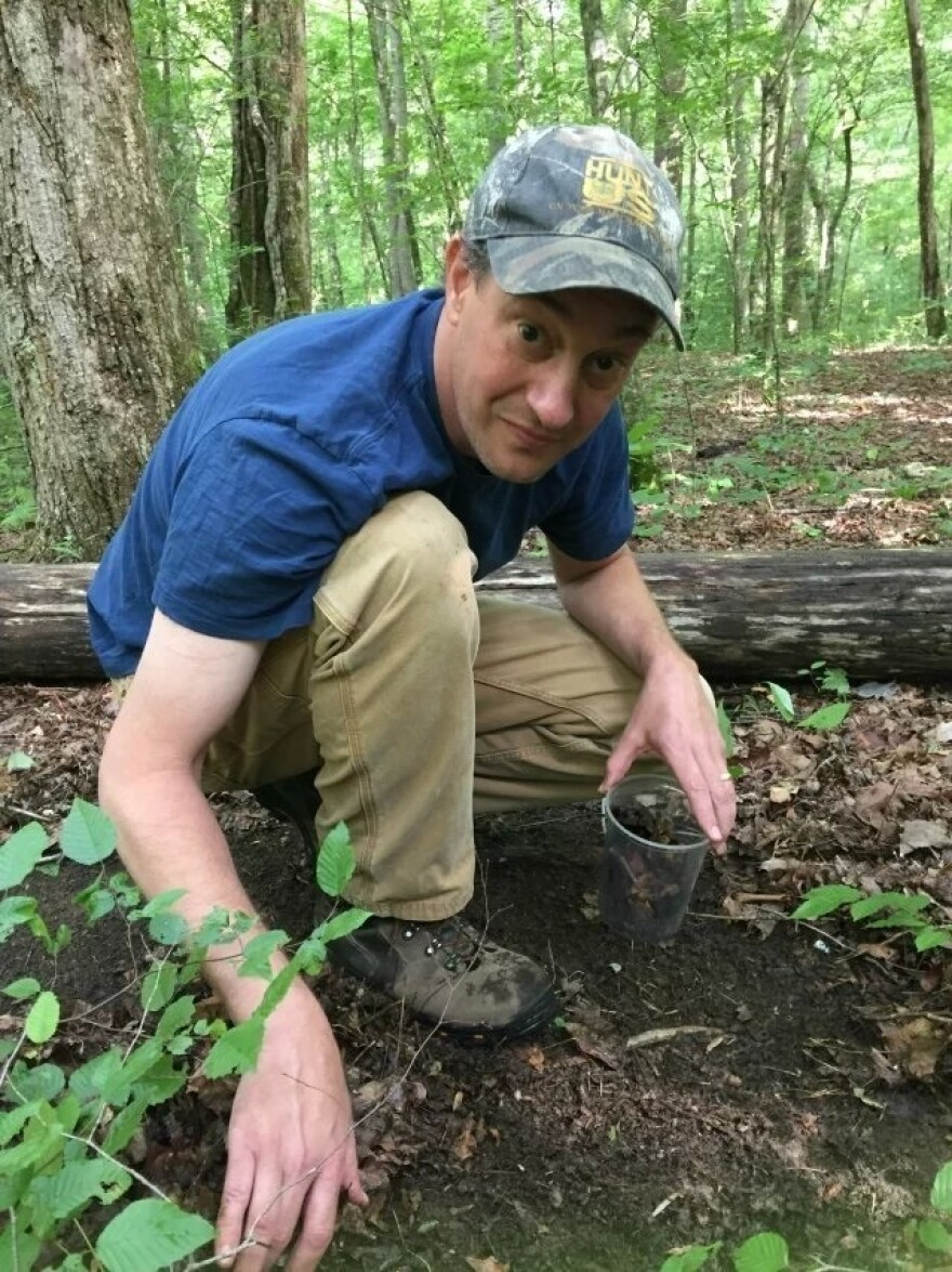 Callaham has been studying earthworms for nearly 25 years.