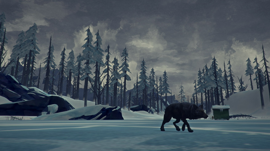Someone — either this wolf or you — is about to meet an unfortunate end in the survival simulator <em>The Long Dark.</em>