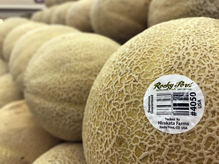 hirakata_farms_rocky_ford_melons_SW_20200820.jpg