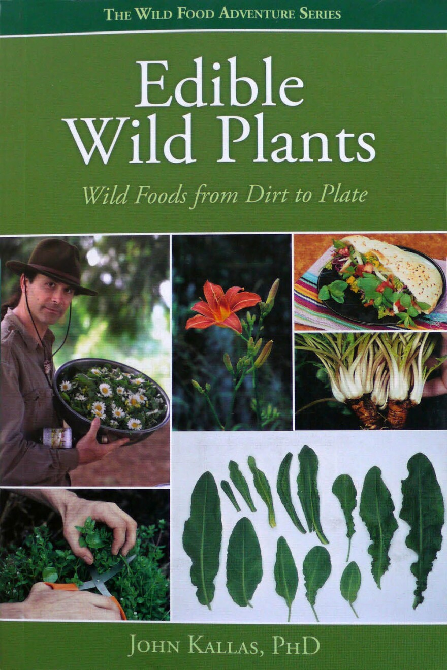 Edible-Wild-Plants_0.jpg