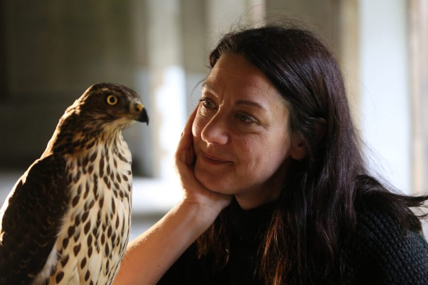 Helen Macdonald with goshawk at Jesus College, Cambridge, England. (Courtesy Mike Birkhead Associates)