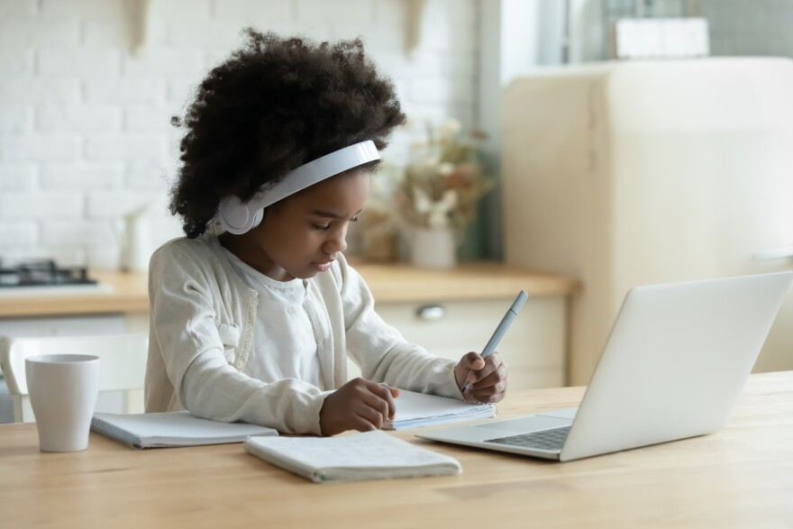 About 50,000 children so far in West Virginia have signed up for virtual schooling in fall 2020.