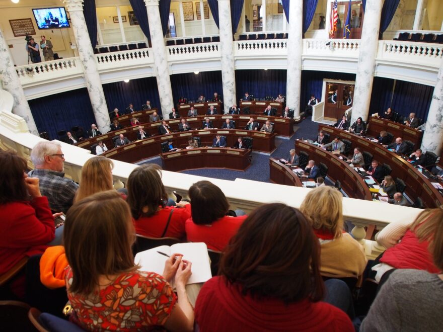Members of Moms Demand Action For Gun Sense Idaho watch from the gallery in Idaho's Capitol building while awaiting floor debate on a gun bill the group opposes. The group often faces stiff opposition in Idaho to any legislation that is seen as restricting gun rights.