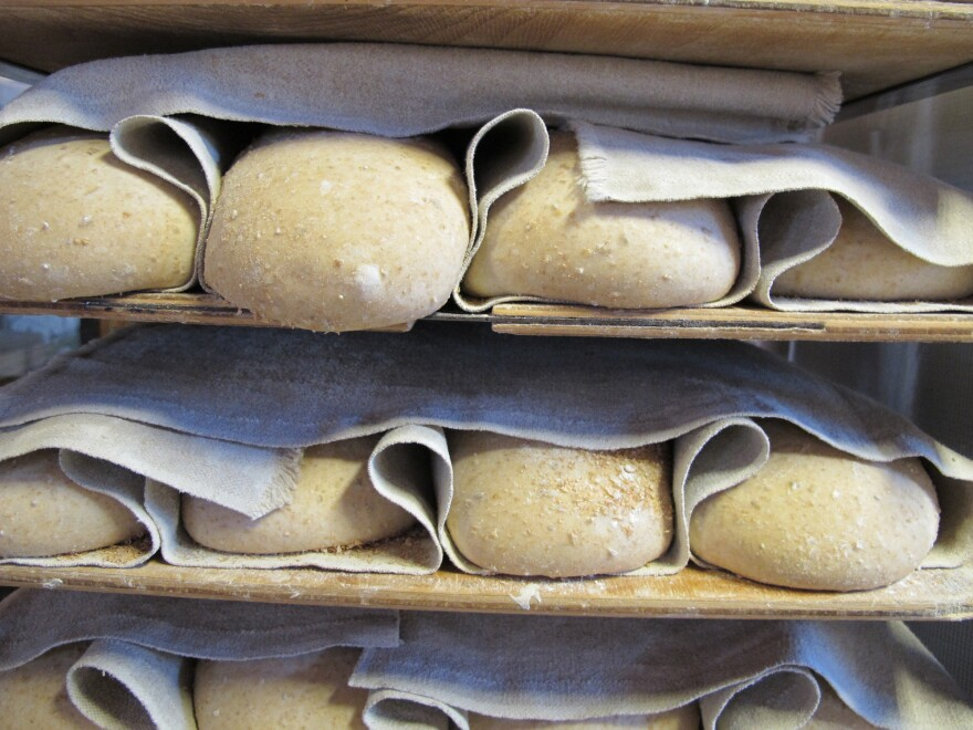 """Loaves rising in linen <em>couches </em>at Della Fattoria Cafe in Petaluma, Calif. The cafe """"is known for its dark, Italian sourdough loaves baked in two massive wood-fired ovens,"""" Fromartz writes."""