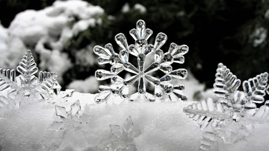 ice-christmas-snow-snowflake-freeze-3009009_1920_-_copy.jpg
