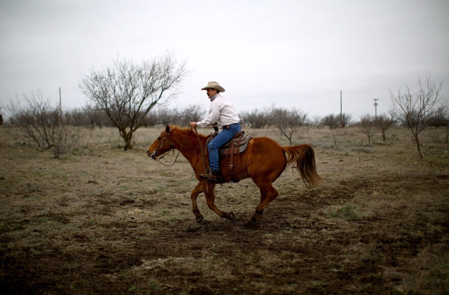 Donnell Brown is the fifth generation of Browns to run the family ranch, which encompasses 6,000 acres of cactus, mesquite and pastures in North Texas.