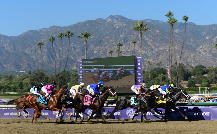 Santa Anita Park, shown here in 2012, has halted races and training to try to determine what is causing the horse deaths.