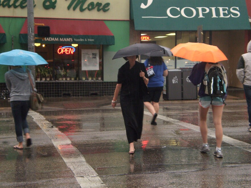 rain,_umbrellas_002.jpg