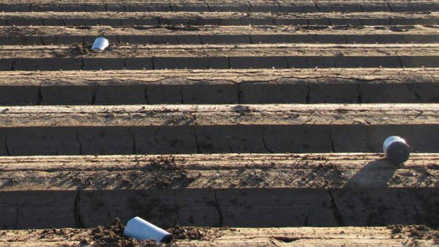 They flew in from Mexico: Cans of marijuana found in a field near Yuma, Ariz.