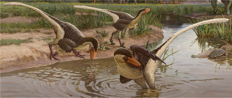 A new feathered dinosaur that lived in what is now New Mexico 67 million years ago is one of the last known surviving raptor species.