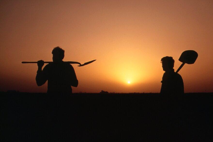 farmworkers_via_stuart_rankin_via_flickr.jpg