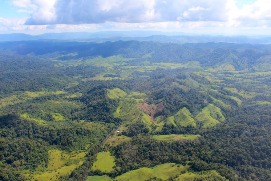 A view of part of the vast Mosquitia jungle in Honduras. A team of explorers, guided by scans made from airplanes, recently discovered an important ancient city in the region.