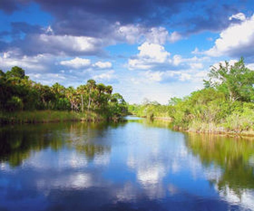Environmental groups are asking the EPA to reject Florida's latest water quality standards.