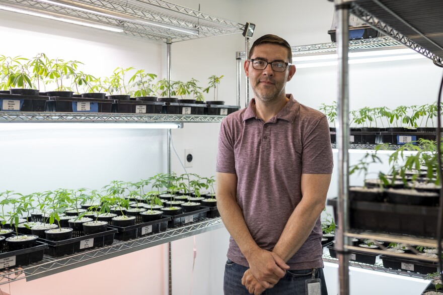 John Curtis stands between several shelves of seedlings in the cultivation center's nursery. From here, he selects plants to move into a larger, adjoining room where they have more space to grow.