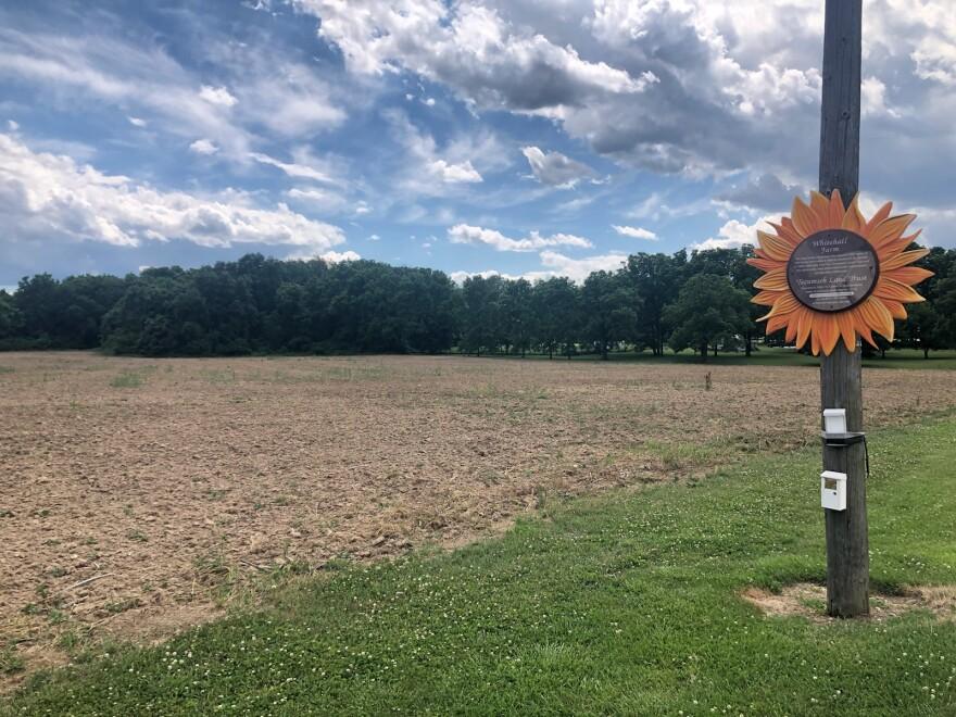 Empty Field At Whitehall Farm