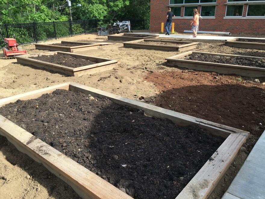Explorer Academy Garden Beds