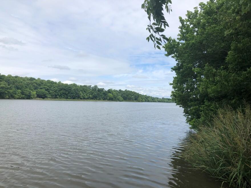 Haw River - near HRB.jpg