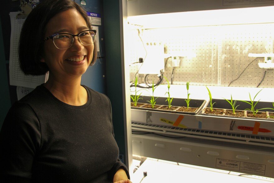 Danforth Center researcher Malia Gehan next to a growth chamber containing plants in September 2019.