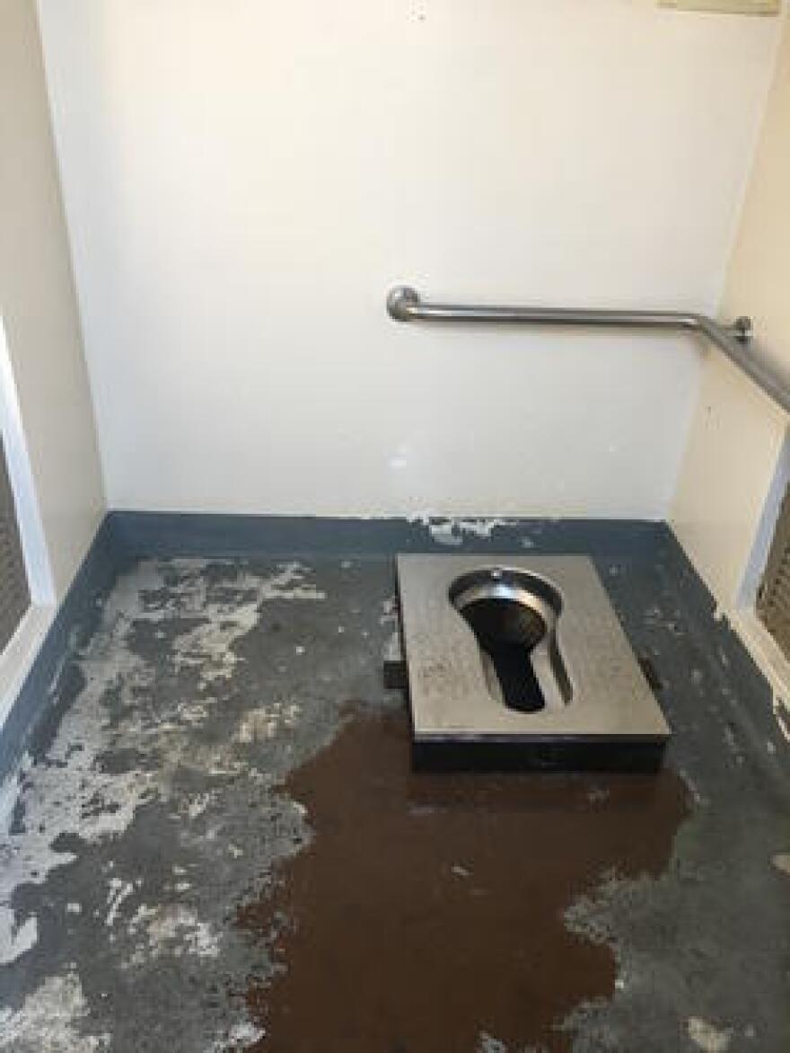 A squat toilet.