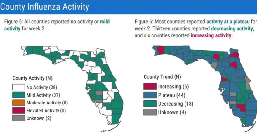 Countywide data shows low levels of influenza across Florida as the state enters the peak of flu season. (credit: WUSF)