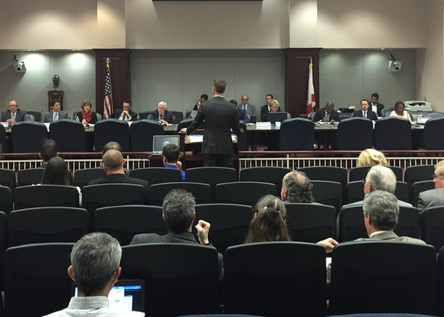 Steube speaking before the House Criminal Justice Subcommittee.