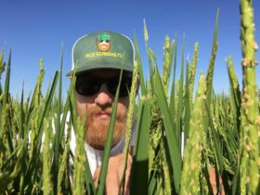 Matthew Sligar, a rice farmer in California who makes videos for Rice Farming TV on YouTube, says he has nothing against vegetables, but they shouldn't adopt the name of grains in their marketing tactics.