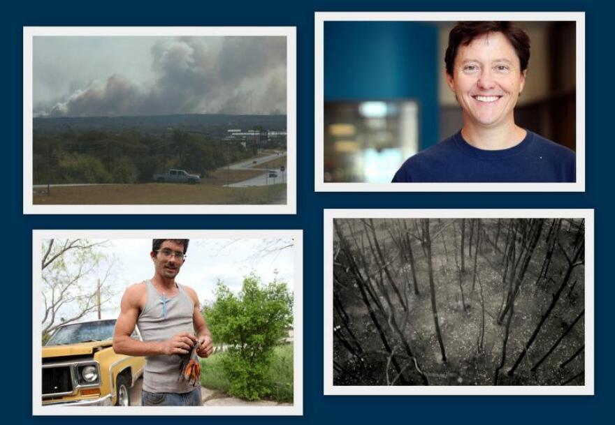 1-wildfire_collage.jpg