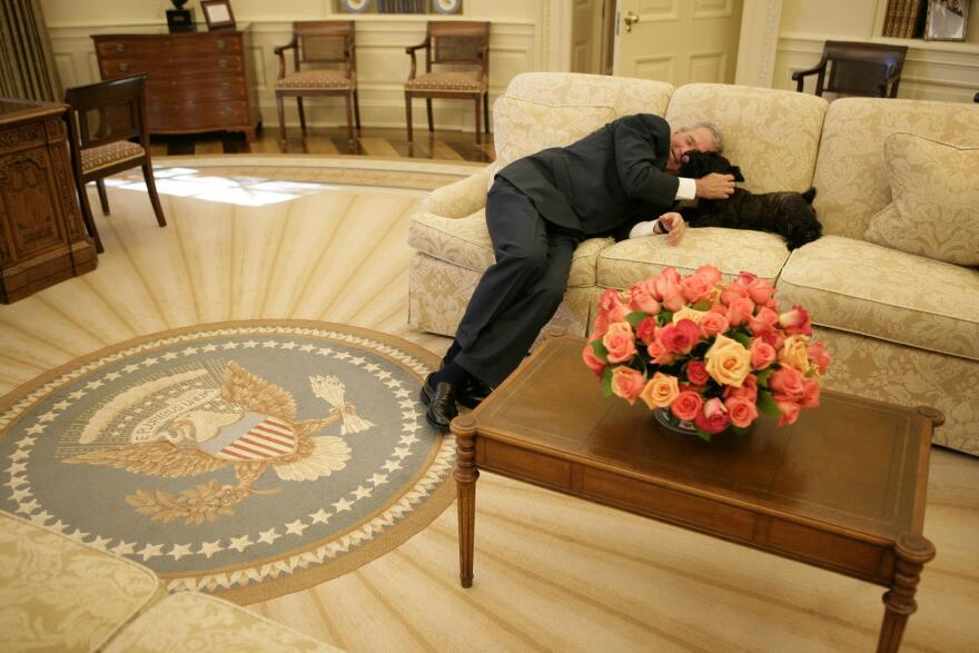 President George W. Bush plays with Miss Beazley in the Oval office.