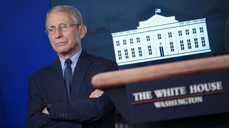 Director of the National Institute of Allergy and Infectious Diseases Anthony Fauci looks on during the daily briefing on the coronavirus in the White House briefing room on April 1.