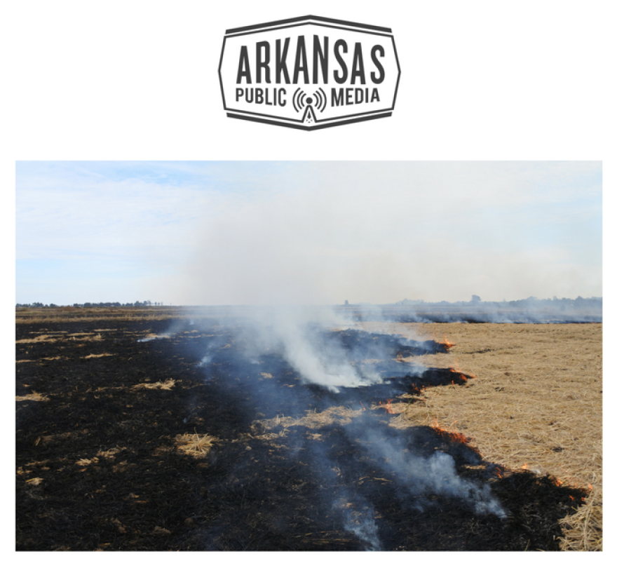 Fire smolders near Osceola following the fall harvest in 2017.