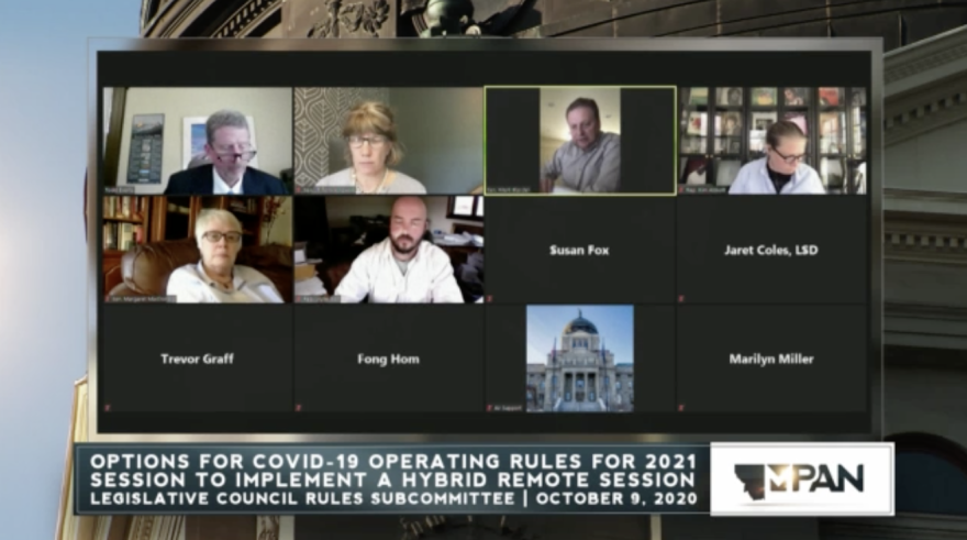 A screenshot from a virtual meeting shows 12 lawmakers, half with faces showing and half as black squares, all members of the 2019 Legislative Council Rules Subcommittee.