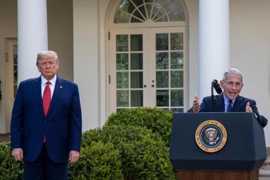 President Donald Trump listens to Dr. Anthony Fauci, director of the National Institute of Allergy and Infectious Diseases speak in the Rose Garden for the daily coronavirus briefing at the White House.
