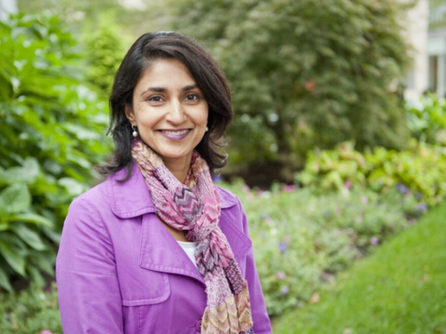 Rupal Patel is a speech scientist at Northeastern University.